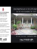 http://casadepoesiasilva.com/wp-content/uploads/2017/11/Domingo-cultural.png